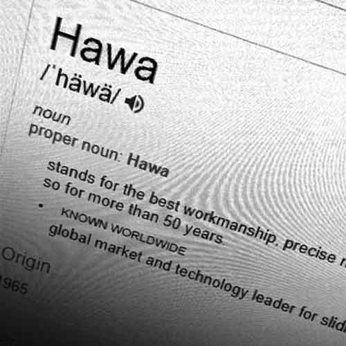 Photograph of computer screen with fictional definition of word Hawa.