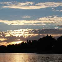 Photograph of the sunset over the Sacramento River delta, trees.