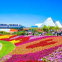 Colorful flowers, monorail, and glass structure photographed in Orlando, Florida.