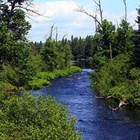Photograph of a deep blue river winding through green shrubbery.