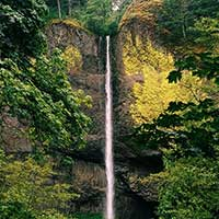 Photograph of Pacific Northwest forest gorge with waterfall, autumn colors.
