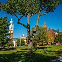 Photograph of trees and buildings on University of Vermont campus.