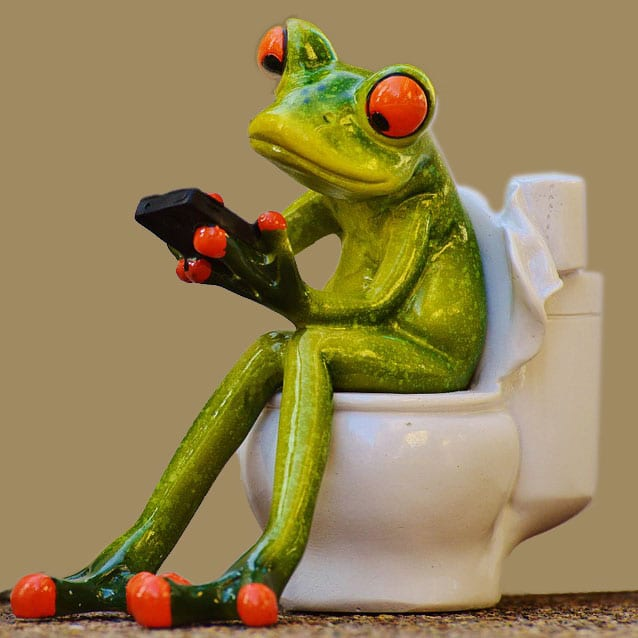 Photo of a ceramic statue of a frog using a cell phone while sitting on a toilet.